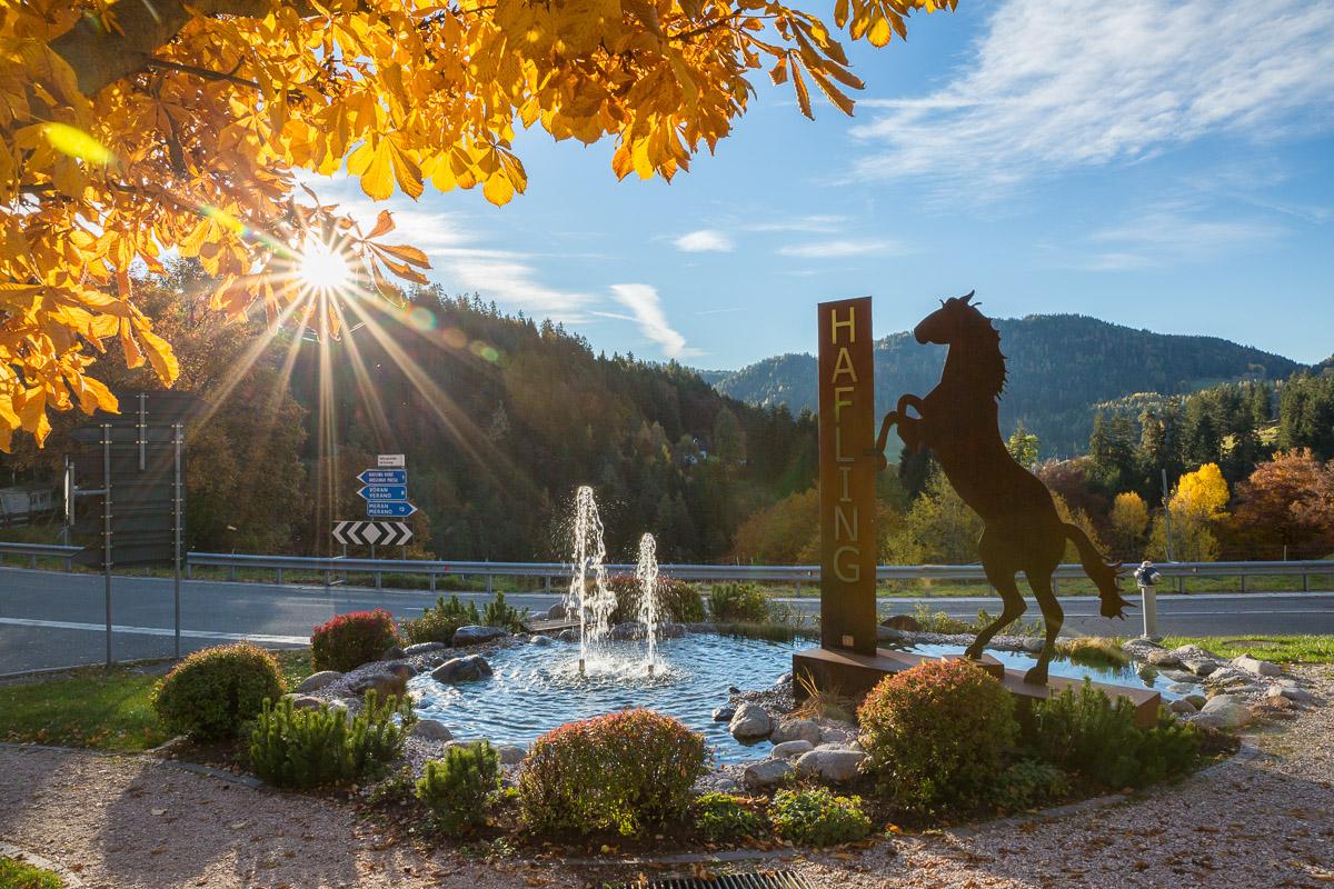 Hafling Pferd Springbrunnen Sonne